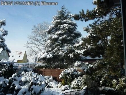sapins jardin Vosges