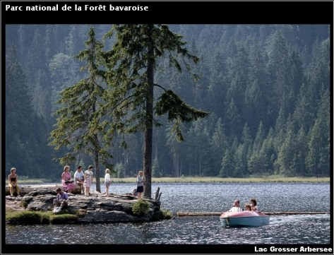 Foret bavaroise Lac Grosser Arbersee