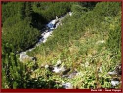 Retezat cascades