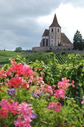route vins alsace