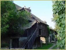 lonjsko polje cigognes maison