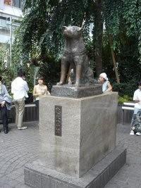 tokyo hachikoo