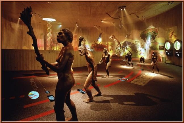musee neandertal krapina
