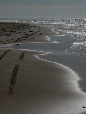 skagen plage de sable