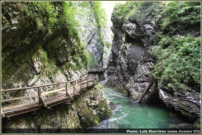 gorges de vintgar slovénie