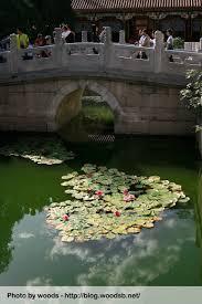 pont beijing