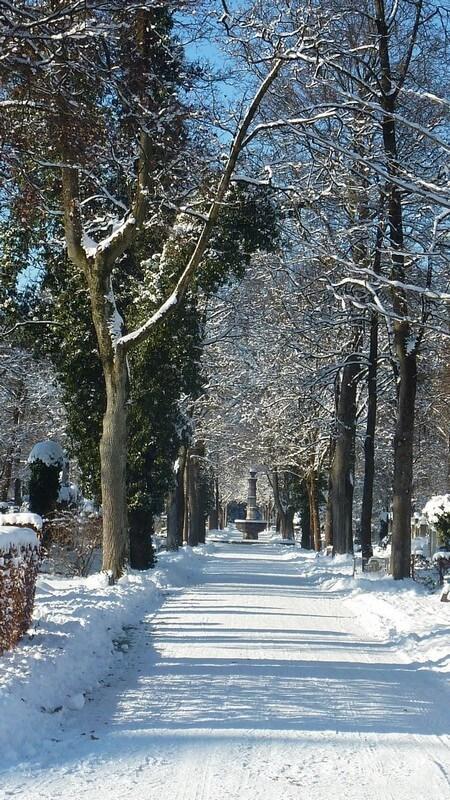 Allée enneigée Cimetiere Westfriedhof Munich