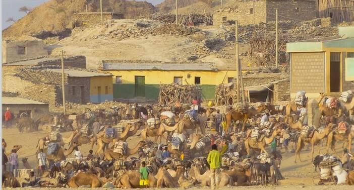 Ethiopie marché au sel à Berhale
