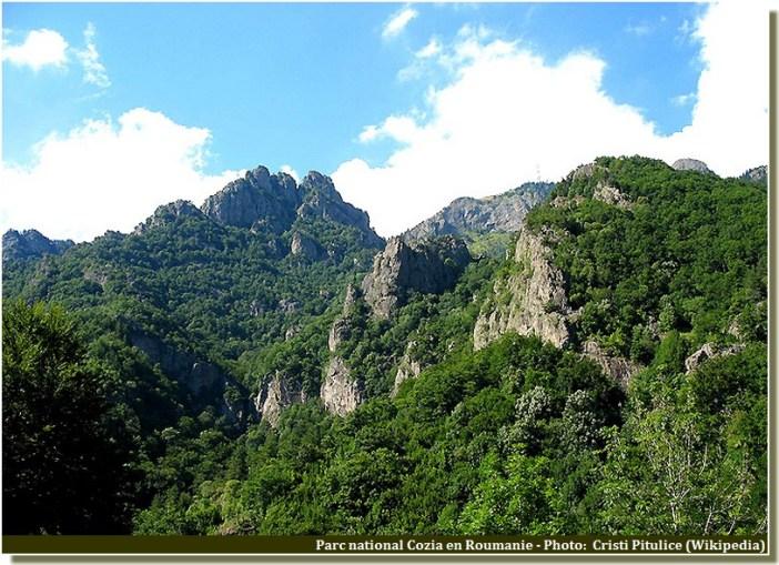 Parc national cozia Roumanie
