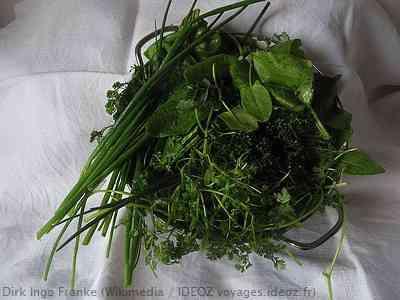herbes pour la sauce verte de francfort