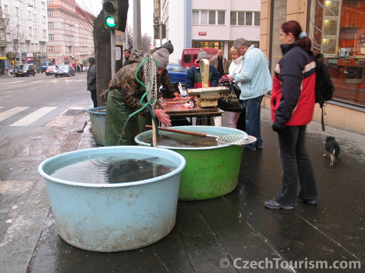 pecher sa carpe noel Prague