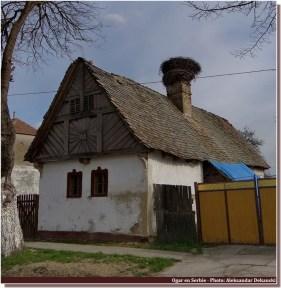 campagne en serbie Ogar