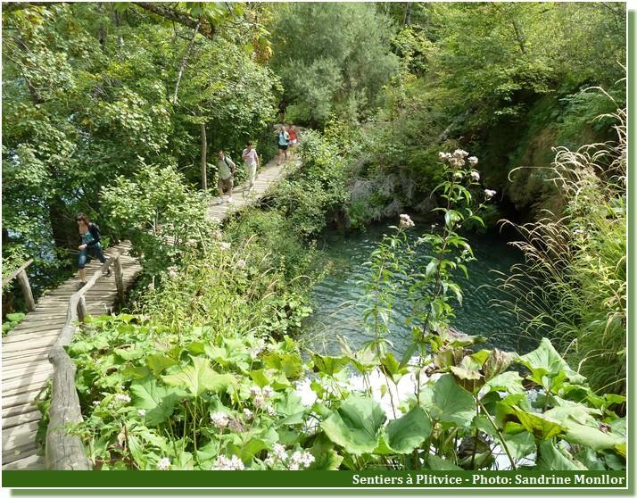 Sentiers à Plitvice