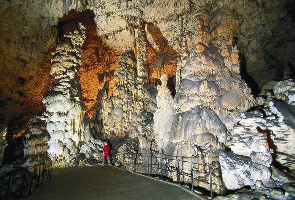 Postojna grottes en slovénie