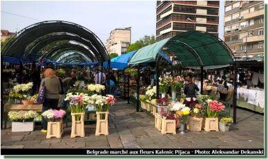 Belgrade marché aux fleurs Kalenic pijaca