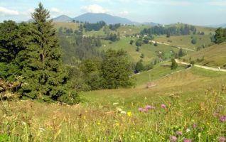 montagne verkhovina Carpates en Ukraine