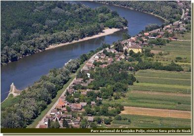 Lonjsko Polje Riviere Sava près de Sisak