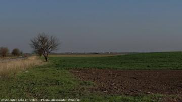 Route entre Ecka et Perlez en Serbie