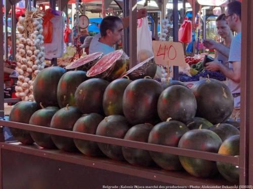 Belgrade Marché des producteurs Kalenic Pijaca : étal de pastèques