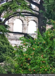 Pula aperçu de l'amphitheâtre
