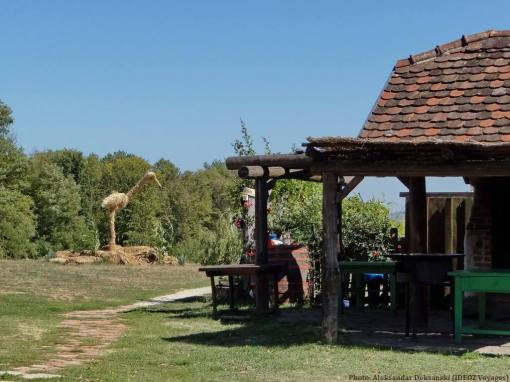 Agrotourisme Etno vino cigogne en paille dans le jardin chez Janko Kezele
