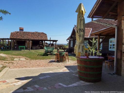 Agrotourisme Etno vino dégustation de vins chez Janko Kezele