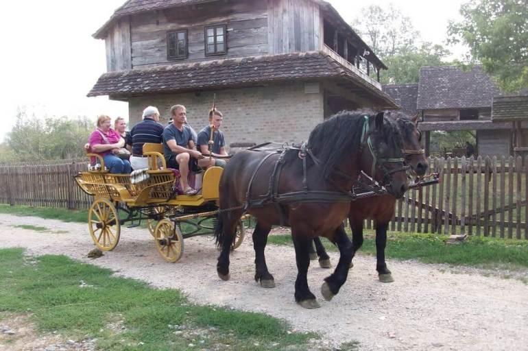 Stara Lonja balade en calèche dans le parc Lonjsko Polje