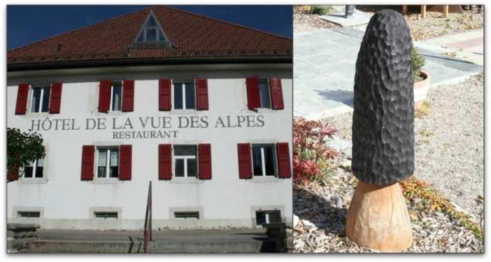 Hotel de la vue des Alpes en Suisse