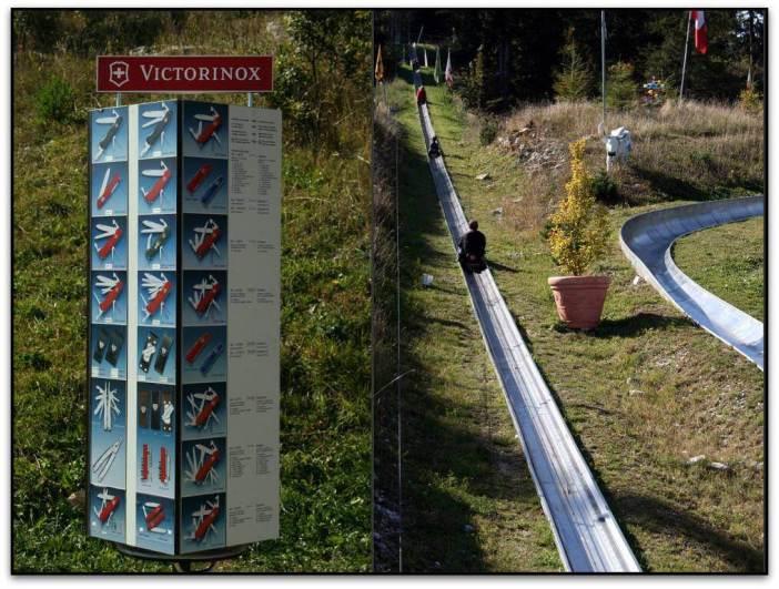 Toboggan luge dans le jura suisse