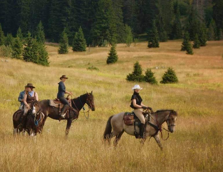 Balade à cheval dans le Velebit Nord Linden Tree retreat