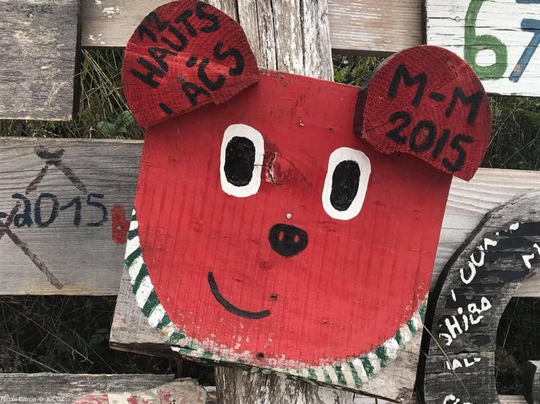 Refuge des ours de Kuterevo : rencontre avec les ours bruns de Croatie 13