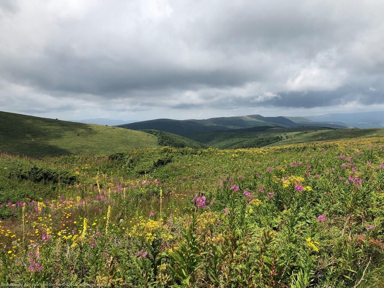 Randonnée à Stara Planina, sur la via dinarica voie verte en Serbie 1
