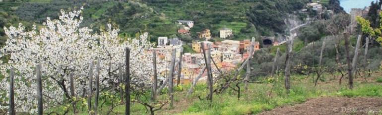 Cinque Terre, la Riviera Ligure du Levant (Voyage Italie) 10