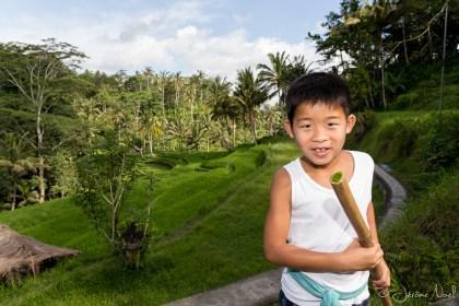 Gunung Kawi : rizières