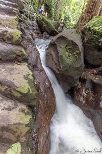 Monkey Forest - cascade