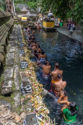 Tirta Empul : 1er bain purifiant