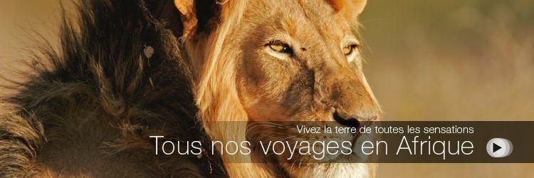 Home-Tous-nos-voyages-en-Afrique-Africaveo