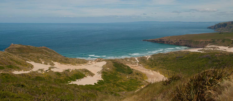 Sandfly Bay, Otago Peninsula, Nouvelle-Zélande