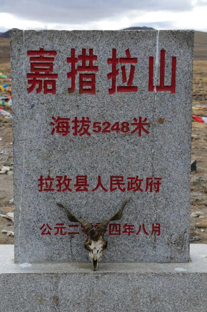 2009_11_12-66.jpg