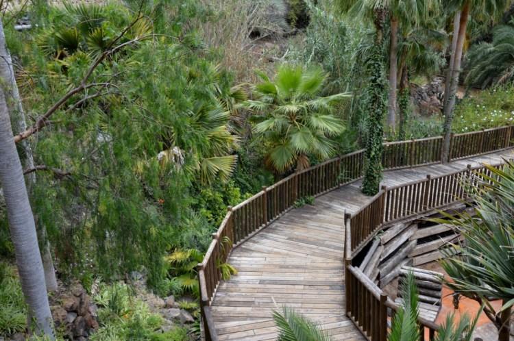 Les allées du Jungle Park Tenerife
