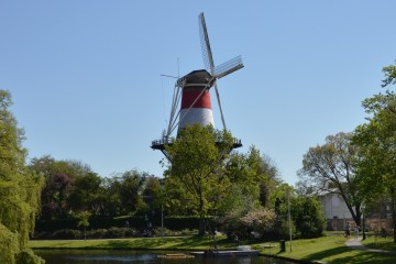 Photo moulin Leiden