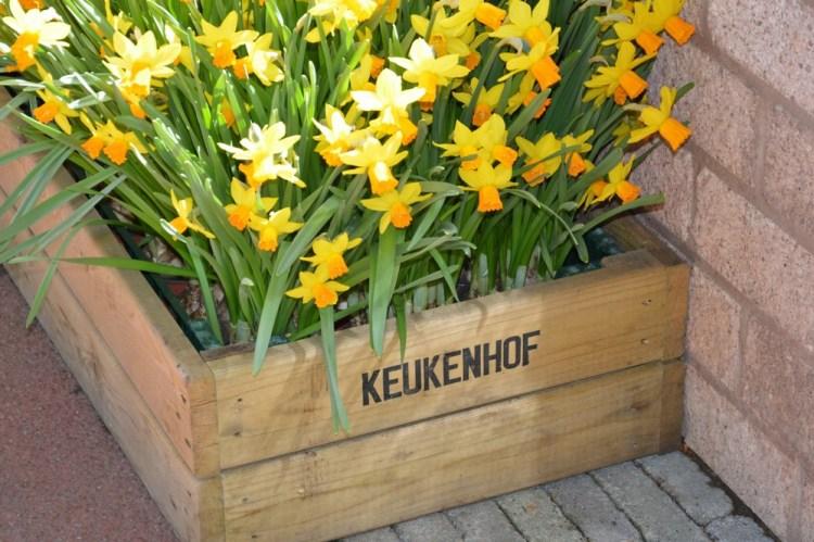 keukenhof-voyages-ici-et-ailleurs-helene-muckensturm-2016-6
