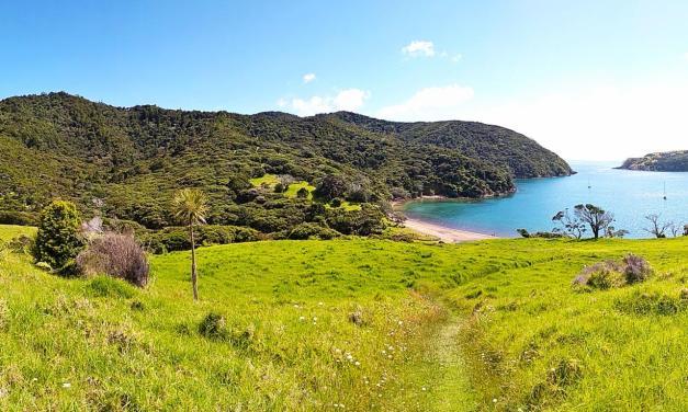 Nouvelle Zélande en van: une parenthèse de verdure entre deux séjours en Australie