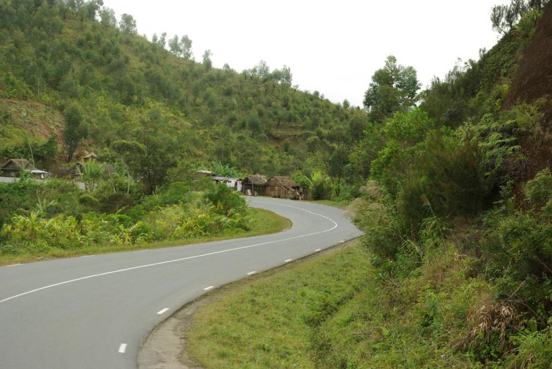 forêt humide île de madagascar