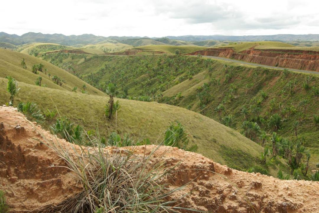 hauts plateaux du centre de l'île de Madagascar