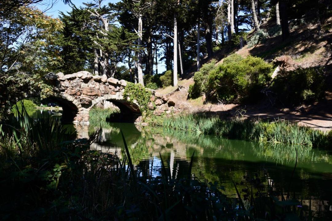 parc golden gate san francisco ouest américain