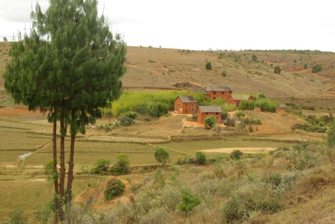 village des hauts plateaux de l'île de Madagascar