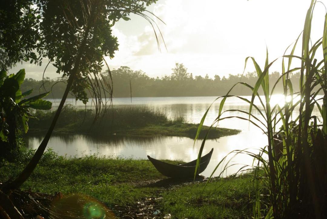 paysage de l'île de Madagascar