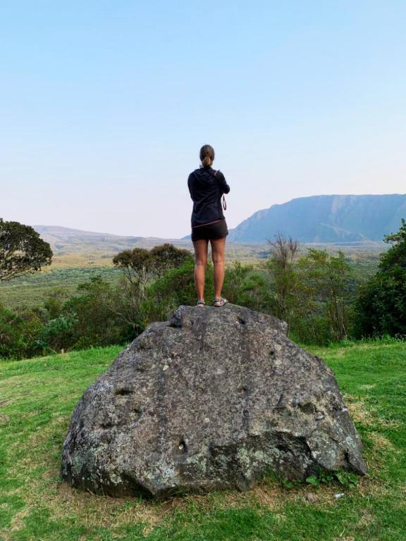 voyager et contempler