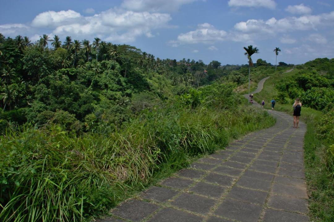une balade nature à proximité d'ubud en indonésie